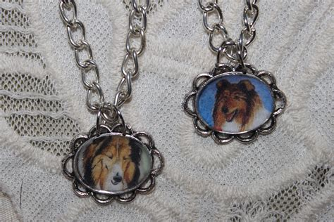 necklace for dogs collie necklaces for dogs fan 32662743 fanpop