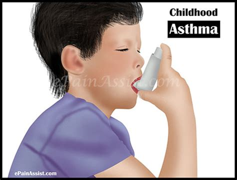 can dogs get asthma boots for dogs with allergies read more