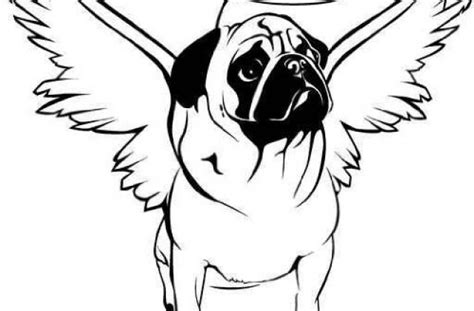 pug page pugs colouring pages page 3 litle pups