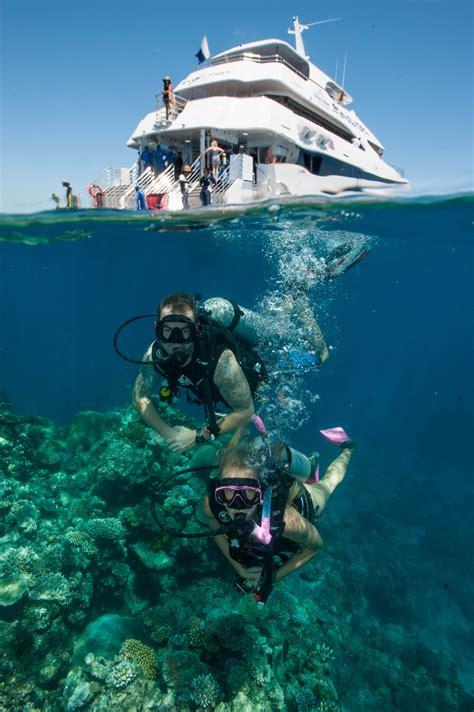 dive great barrier reef evolution snorkel dive cairns tourism town find