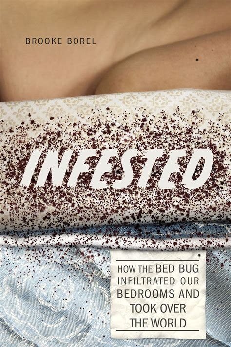 how are bed bugs made why bed bugs have made a horrifying comeback vox