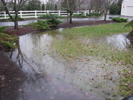 backyard water drainage problems eugene drainage contractor eugene water drainage yard drainage solutions