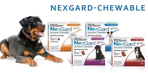 nexgard for dogs reviews nexgard chewable flea tick treatment pros cons