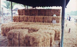 Harga Sabut Kelapa Kering mesin pembuat tepung mesin pengurai sabut kelapa