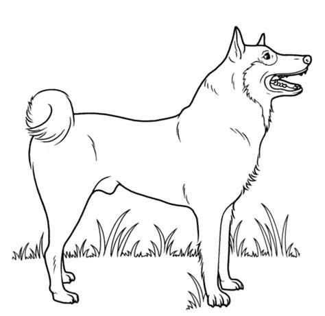 guard dog coloring page desenho de cachorro de rua para colorir desenhos para