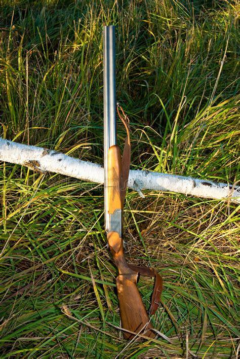 jachtgeweer vergunning jachtgeweer stock afbeelding afbeelding bestaande uit