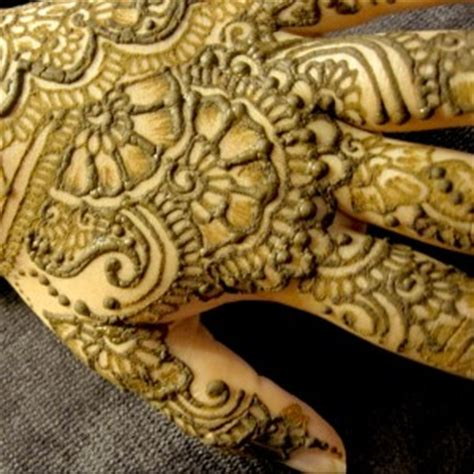 henna tattoos houston tx henna artists for hire in houston tx gigsalad