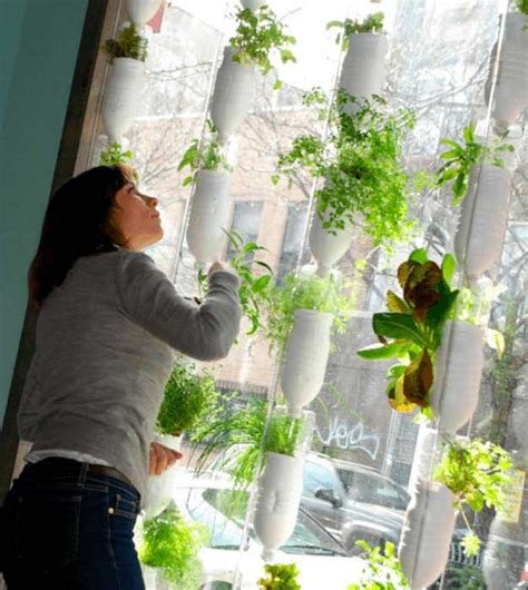 Hydroponic Systems Roundup 33 Best Hydroponic Gardens Hydroponic Wall Garden