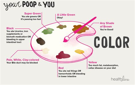 Color Stool Chart by 3 Simple Ways To Visually Track Your Gut Health A Gutsy