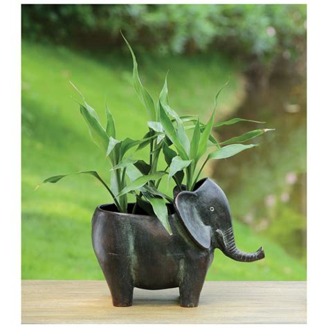 Elephant Planters by Elephant Planter At Signals Hw6342