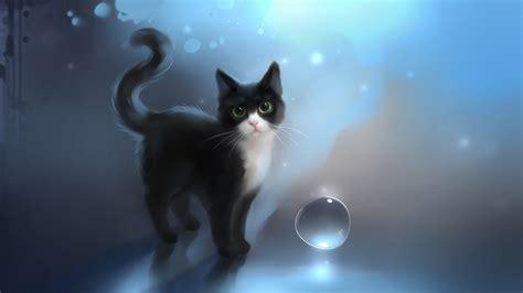 cat wallpaper deviantart http apofiss deviantart com art soulshine 317483964
