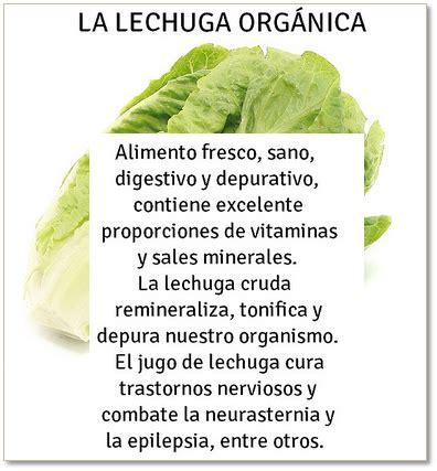 alimento alcalino salud y bienestar alimentos alcalinos