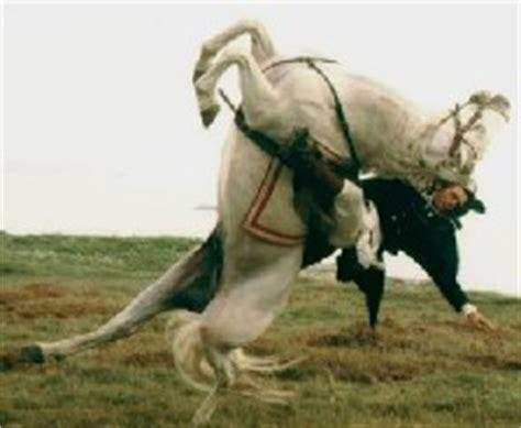 N Vallen Top je paard vallen zonnehart 2012 haiku joz le bruyn