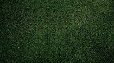 Grass Background Pattern Free | green grass texture pattern wallpapers full hd backgrounds
