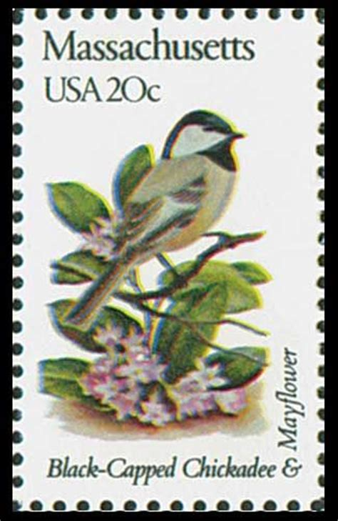 massachusetts state bird black capped chickadee state