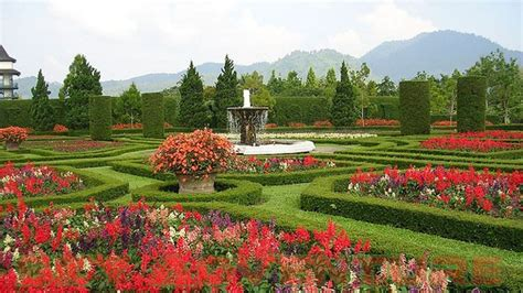 Special Edition Kebun Tanaman Mini Garden berkunjung ke taman bunga nusantara outbound lembang