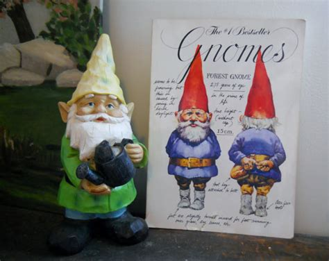 of gnomes books gnomes illustrated book of gnome history lore by dejafaye