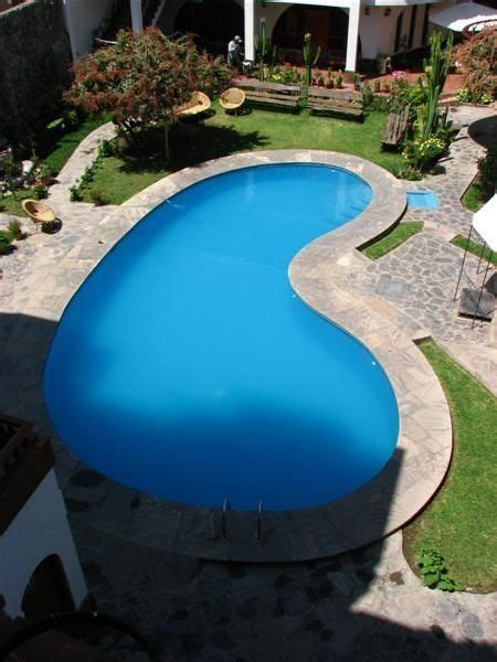 kidney shaped swimming pool kidney shaped pool in the corner gardening pinterest