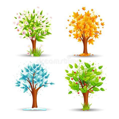 illustration of season trees season tree stock photo image 31094720