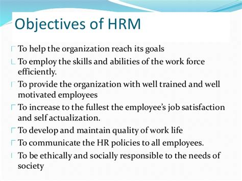 Objectives For Resume Of Hrm Student by Sle Objectives In Resume For Hrm Resume Ideas