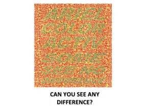 Color Test Blind Color Blind Test