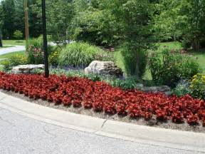 annual flower beds related keywords amp suggestions annual