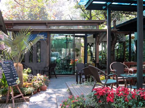 coffee shop garden design elliebum coffee garden arak rd chiang mai