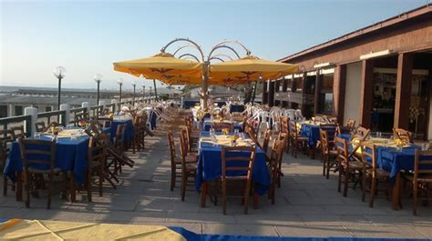 bagno corallo tirrenia bagno lomi tirrenia restaurant reviews phone number
