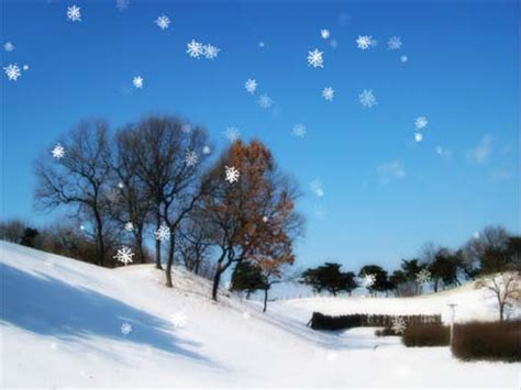 wallpaper 3d winter 3d winter wallpapers fimho