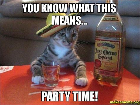Party Animal Meme - you know what this means party time make a meme