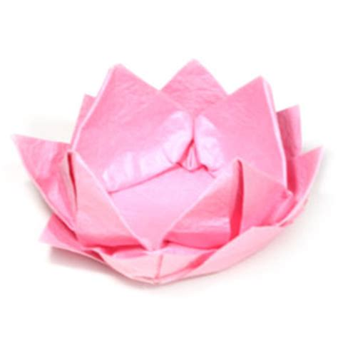How To Make Origami Lotus Flower - how to make a new origami lotus flower page 1