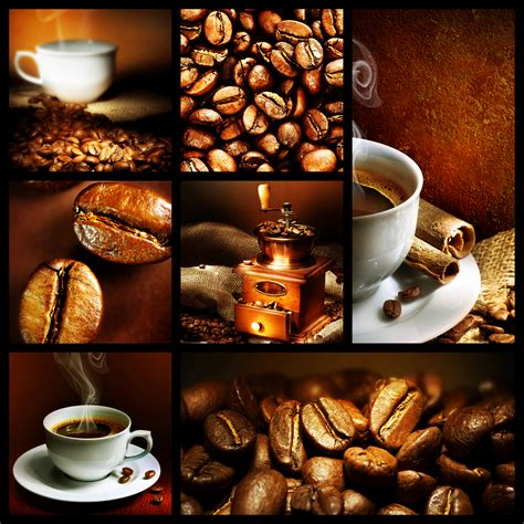 Coffe Cafe cafe shop afw