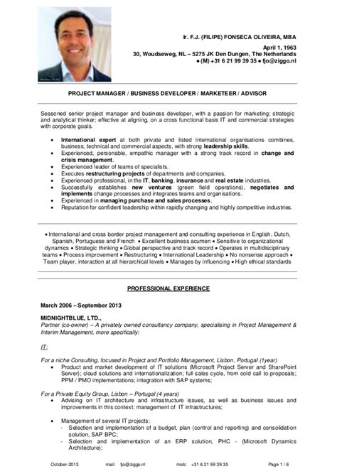 Sle Curriculum Vitae Business Consultant Erp Implementation Resume Sle 59 Images Business