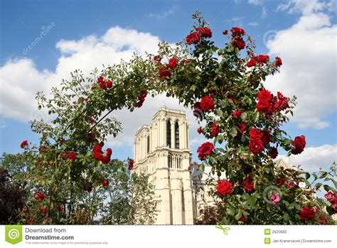 Notre Dame Mba Admissions Statistics 2000 by Notre Dame With Roses Stock Photography Image 2620682