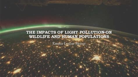 Animal Effects Dan Light the effects of artificial lighting