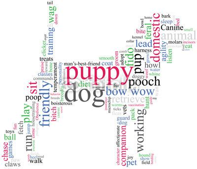 words to describe dogs quot outline with describing words quot stock image and royalty free vector files on
