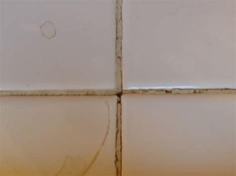 bathroom tile repairs and replacement bathroom tile repair bathroom design ideas 2017