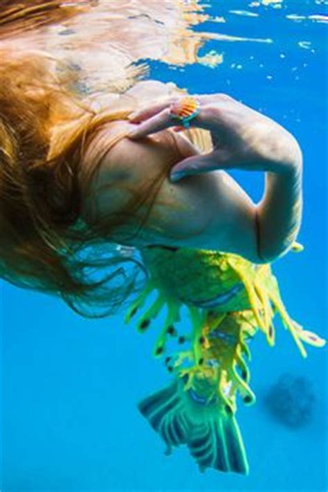 by harry fayt underwater harry fayt pinterest artwater by harry fayt 176 underwater expressions