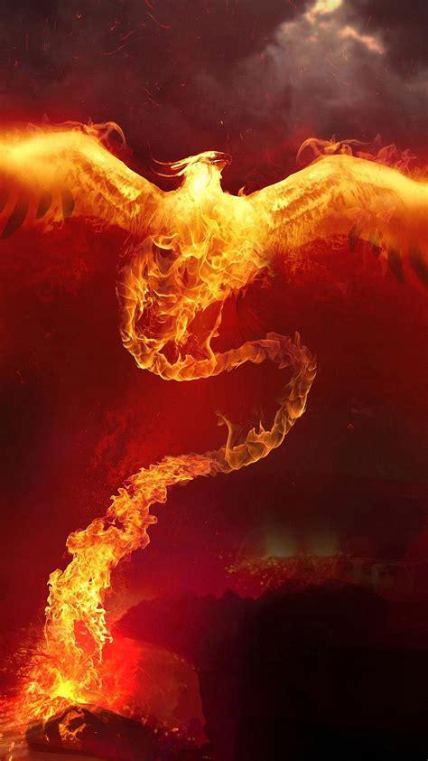 wallpaper iphone fire phoenix fire wallpaper for iphone x 8 7 6 free