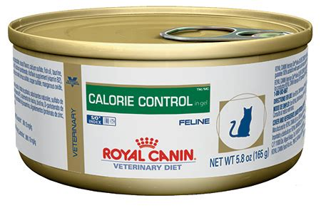 weight management canned cat food royal canin calorie weight management canned cat food