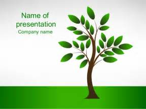 new tree powerpoint template whiteboard freeforums org