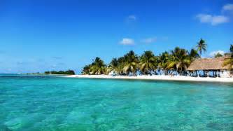 Bird Island Placencia by Book Your Belize Vacation Packages Amp Tours With Roam