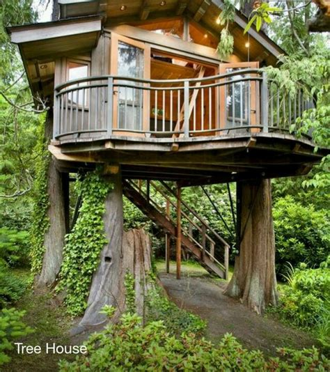 33 best images about tree houses on pinterest disney villas and resorts tree house autumn fall nature pinterest