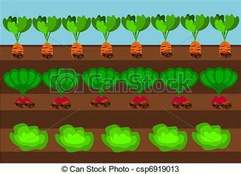 vegetable garden clipart vegetable garden clipart vector