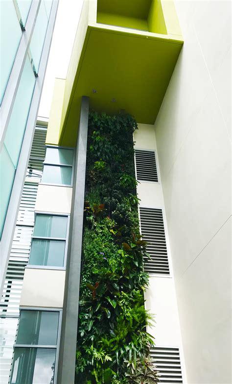 peak apartments vertical garden fytogreen australia