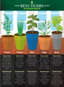 5 kitchen herbs for small garden spaces fix com kitchen herb garden ideas full size of kitchen terrific