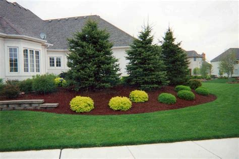 Backyard Landscaping Trees Www Pixshark Com Images C And D Landscaping