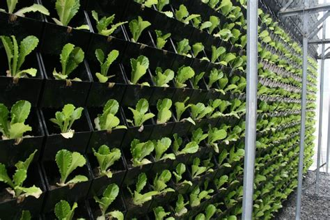vertical planting sc origin vertical garden living wall