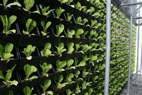 vertical planting sc origin vertical garden living wall