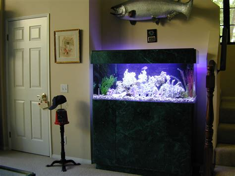 home aquarium design home decorating ideas
